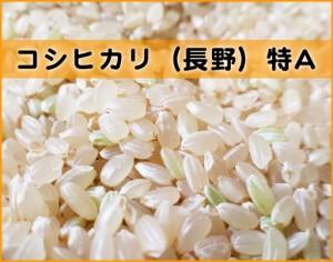 himeya-コシヒカリ長野特A