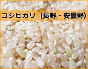 himeya-コシヒカリ長野安曇野