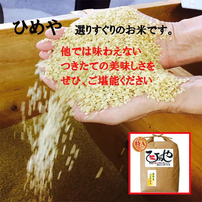 koshihikaritoyama