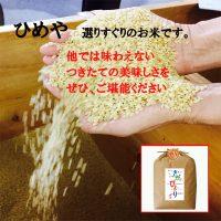 sagabiyori 1